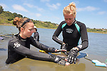 Katie & Stephanie Measuring Thornback Ray