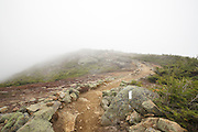 Foggy conditions along the Appalachian Trail (Franconia Ridge Trail) on the summit of Little Haystack Mountain in the White Mountains, New Hampshire USA during the autumn months