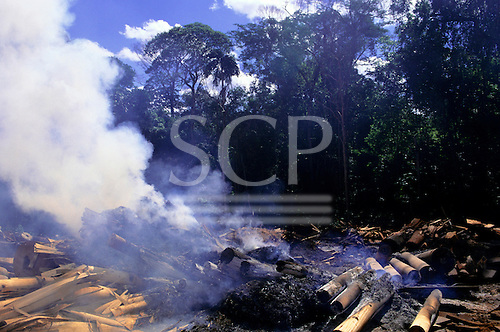 Amazon, Brazil. Burning of rainforest to clear land for agriculture or cattle ranching; Para State.