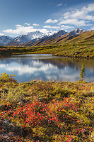 Denali National Park, Interior, Alaska