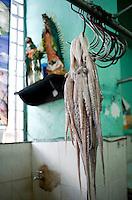 Octopus and the Virgen de Guadalupe. at the Mercado Lucas Galvez, market. Merida, Yucatan, Mexico