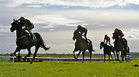 Definightly (no. 2), ridden by Johnny Murtagh and trained by Roger Charlton, wins the group 3 Sapphire Stakes for three year olds and upward on June 30, 2012 at the Curragh Racecourse in Newbridge, Kildare, Ireland.  (Bob Mayberger/Eclipse Sportswire)