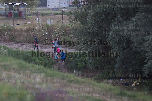 Illegal migrants leave a forest on the outskirt of Szeged (about 173 km South-East of capital city Budapest), Hungary on July 16, 2015. ATTILA VOLGYI
