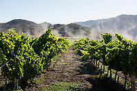 Boutique hotel and winery Bruma, Valle de Guadalupe, Baja California Norte, Mexico