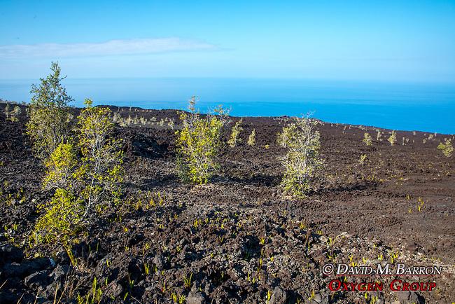 Kipahoehoe Nature Reserve