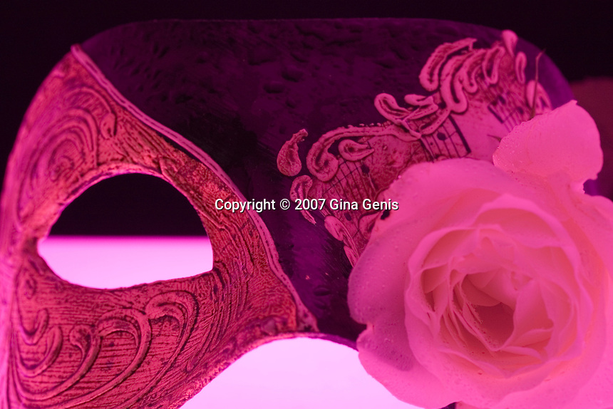 Gothic mask with romantic rose