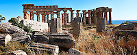 Fallen column drums of Greek Dorik Temple ruins  Selinunte, Sicily photography, pictures, photos, images & fotos. 58 Greek Dorik Temple columns of the ruins of the Temple of Hera, Temple E, Selinunte, Sicily