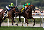 ARCADIA, CA - FEBRUARY 10: Om #6 with Flavien Prat holds off the late charge of Bowies Hero #2 and Corey Nakatani to win the Thunder Road Stakes at Santa Anita Park on February 10, 2018 in Arcadia, California. (Photo by Alex Evers/Eclipse Sportswire/Getty Images)