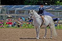 English Equitation