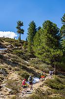 Austria, East-Tyrol: hiking near Staller Sattel passroad in Defereggen Valley | Oesterreich, Ost-Tirol: Wandern beim Staller Sattel am Ende des Defereggentals