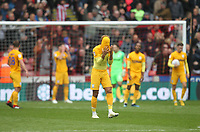 Preston North End's players in despair after Sheffield United's third goal<br /> <br /> Photographer Mick Walker/CameraSport<br /> <br /> The EFL Sky Bet Championship - Sheffield United v Preston North End - Saturday 22 September 2018 - Bramall Lane - Sheffield<br /> <br /> World Copyright &copy; 2018 CameraSport. All rights reserved. 43 Linden Ave. Countesthorpe. Leicester. England. LE8 5PG - Tel: +44 (0) 116 277 4147 - admin@camerasport.com - www.camerasport.com