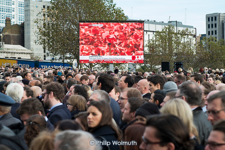 Crowds mark Armistice Day at the Tower of London 100 years after the start of the First World War.