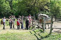 Mädchen beim Reitunterricht auf Ponyhof, Reitlehrerin und Mädchengruppe holen die Reitponys von der Weide, Reiten, Reiterhof, Gestüt