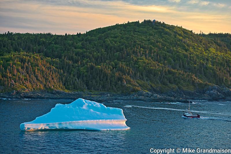 Iceberg  in La Scie Harbour off the Atlantic Ocean. Baie Verte Peninsula.<br />La Scie<br />Newfoundland & Labrador<br />Canada