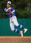 STP Baseball - Varsity - 2019