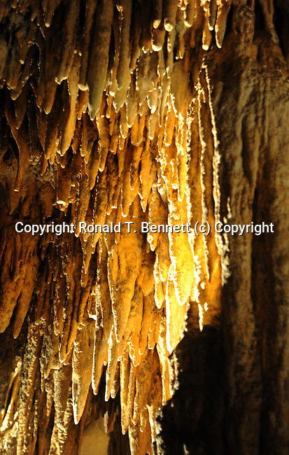 Stalacities stalagmites and columns Luray Caverns Luray Virginia, Luray Caverns, Luray cave, Luray Virginia, Skyline Drive, speleothems, stalactite, stalagmites, flowstone, great stalacpipe organ, lithopone, columns, Blue Ridge, Shenandoah Valley, Allegheny Range, Appalachian Mountains, Silurian limestone, calcite, manganese dioxide,  limestone, copper, Luray caverns active cave, new formation deposits accumulate, calcium carbonate, one cubic inch every 120 years, eroded forms, Pisa, Elfin Ramble, carbonate, flowstone, Empress Column, Giant's Hall, Double Column, alabaster, Mucor stalactites, fungus, crystals growing from side of active stalactite, Dream Lake, Wishing well, August 13 1878, Andrew J Campbell tinsmith, Benton Stebbins,