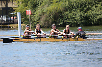 Race: 11  Event: Development 4+<br /> Crew: 222  Club: Brasenose Coll<br /> <br /> Henley Women's Regatta 2018<br /> Friday<br /> <br /> To purchase this photo, or to see pricing information for Prints and Downloads, click the blue 'Add to Cart' button at the top-right of the page.