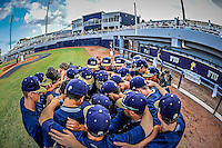 FIU Baseball 2013 (Combined)