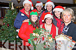 CHRISTMAS TIME: Planning ahead for the Christmas Party in Killorglin next weekend, committee members, front l-r: Grainne Eccles, Edel Murphy, Geraldine O'Sullivan. Back l-r: Erwin Kingston, Johnny C (DJ), Erna Eclles, Maura Moriarty.