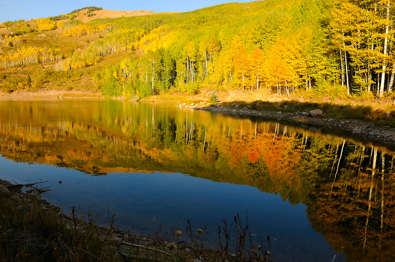 Camp Jackson Reservoir on the Blue Mountain north of Blanding, Utah has reflections of the fall colors that are even more brilliant than those on the hillside.