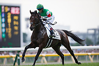 FUCHU,JAPAN-MAY 28: Rey de Oro,ridden by Christophe Lemaire,prepares for the Japanese Derby at Tokyo Racecourse on May 28,2017 in Fuchu,Tokyo,Japan (Photo by Kaz Ishida/Eclipse Sportswire/Getty Images)