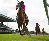 8th Turf Classic - Channel Maker