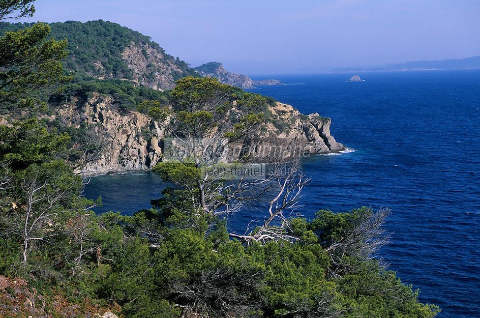 Europe/Provence-Alpes-Côte d'Azur/83/Var/Ile de Porquerolles: Côte rocheuse et grand cale ouest