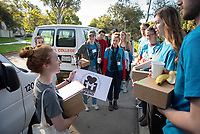 Cleo Charpantier '19. Occidental College students, staff and alumni volunteer all over the Los Angeles area as part of MLK Day of Service, organized by the Office of Community Engagement (OCE), on Saturday, Jan. 26, 2019.<br /> In honor of Dr. King's spirit of service and peace, the aim of the MLK Day of Service is to engage Oxy students, staff, faculty, and alumni in community-based projects.<br /> (Photo by Marc Campos, Occidental College Photographer)