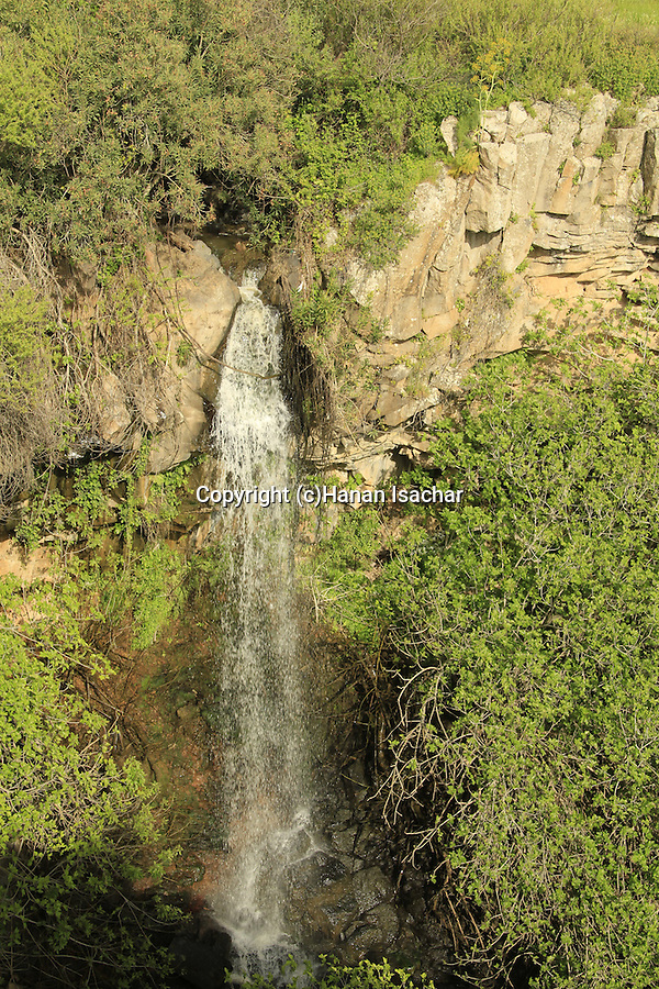 Golan Heights, Ayit waterfall in Yehudiya nature reserve