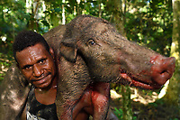 """Papuan hunter and guide Frans, from Lobo village, here with a wild boar, Sus scrofa, he speared with a cut-off bamboo stem, Triton Bay, mainland New Guinea, Western Papua, Indonesian controlled New Guinea, on the Science et Images """"Expedition Papua, in the footsteps of Wallace"""", by Iris Foundation"""