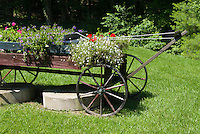 Farm cart flower container garden using rustic wheeled old antique tractor for garden ornament