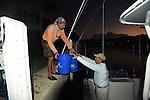 Tourney sailfish
