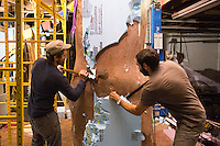 "Joel Erland (left) and Miguel Antonio Horn hack off the styrofoam mold on Horn's sculpture ""Colossus,"" a four meter statue of King Tutankhamen."