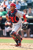 April 11, 2010:  Catcher Jhonathan Solano of the Harrisburg Senators during a game at Blair County Ballpark in Altoona, PA.  Harrisburg is the Double-A affiliate of the Washington Nationals.  Photo By Mike Janes/Four Seam Images