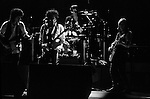 Bob Dylan and Tom Petty and the Heartbreakers<br />