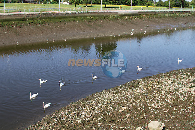 The river boyne at an extremely low tide.Picture Fran Caffrey/www.newsfile.ie