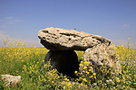 The Golan Heights, a dolmen used for burial in the rocky basalt areas
