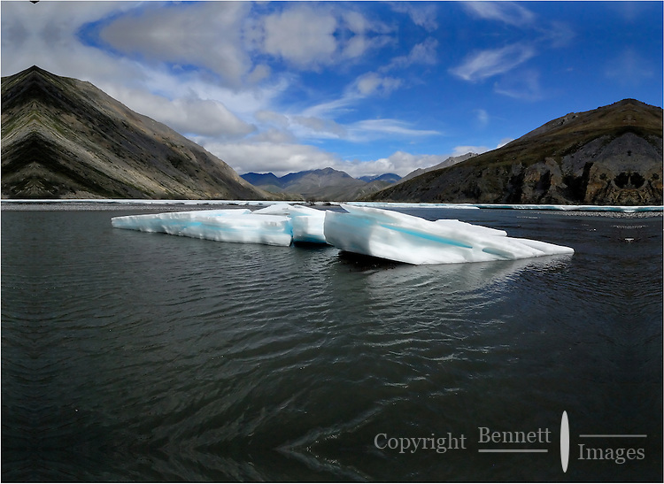 Chunks of river ice, known as aufeis, are slowly consumed by the Kongakut River, in Alaska's Arctic National Wildlife Refuge.