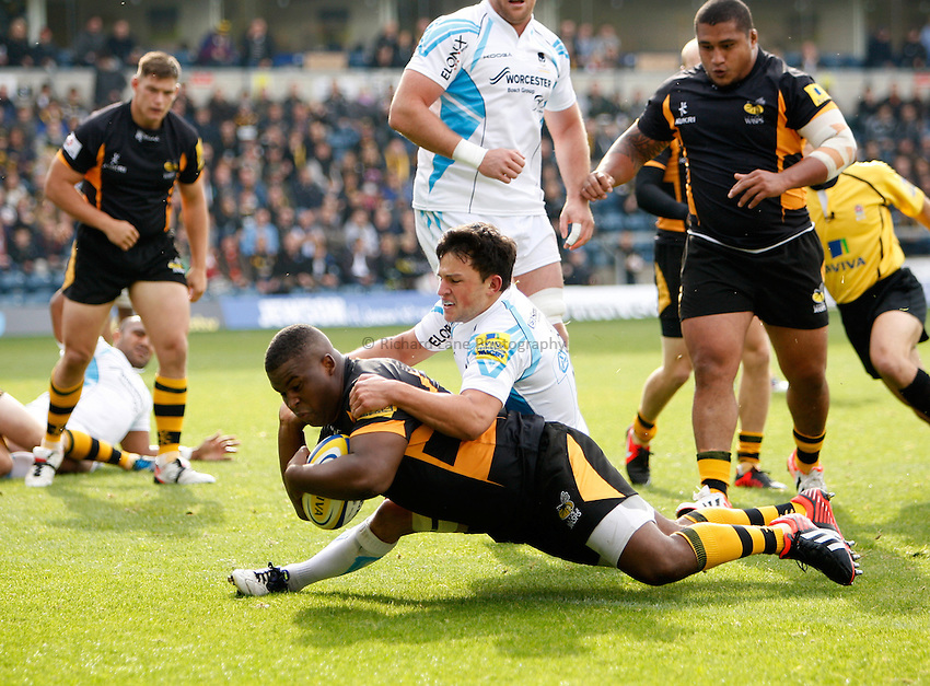 Photo: Richard Lane/Richard Lane Photography. London Wasps v Worcester Warriors. 07/09/2012. Wasps' Simon McIntyre  dives over for a try.