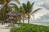 ZANZIBAR, Paje Beach, Chairs under Palm Trees in Baraza Hotel watching the ocean