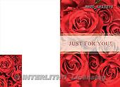 Alfredo, FLOWERS, photos, BRTOLP15276,#F# Blumen, flores