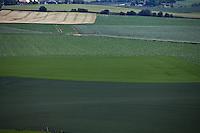 Campo di grano dove si svolse il 18 giugno 1815 la battaglia di Waterlo