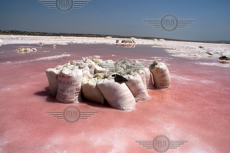 Bags full of table salt wait for collect at a salt lake near Baku.