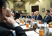 United States President Donald Trump meets with the Republican Congressional leadership in the Roosevelt Room at the White House in Washington, D.C. on March 1, 2017. Visible from left to right: White House Chief of Staff Reince Priebus, OMB Director is Mick Mulvaney, US House Majority Leader Kevin McCarthy (Republican of California), US Senate Majority Leader Mitch McConnell (Republican of Kentucky) President Trump, and Speaker of the US House Paul Ryan, (Republican of Wisconsin).  <br /> Credit: Kevin Dietsch / Pool via CNP