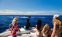 A family observes as a whales swim close to their boat off the coast of Maui.