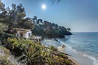 Le domaine du Rayol en f&eacute;vrier : la maison de la plage, l'anse et la pointe du Figuier.<br /> <br /> (mention obligatoire du nom du jardin &amp; pas d'usage publicitaire sans autorisation pr&eacute;alable)