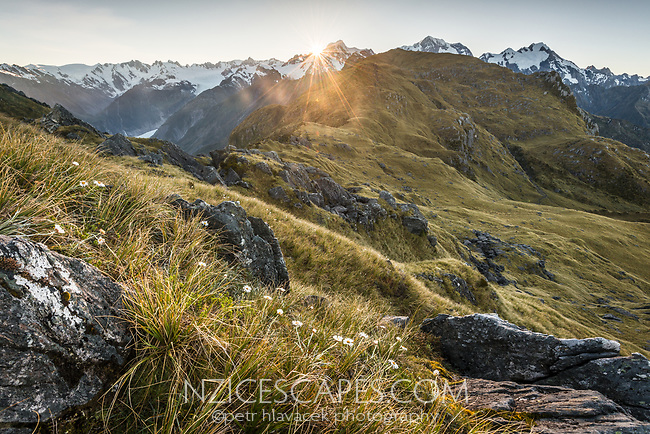 Sun rises behind Mount Tasman with Aoraki Mount Cook on right from Mt. Fox with Fox Glacier visible on left, Westland Tai Poutini National Park, West Coast, UNESCO World Heritage Area, New Zealand, NZ