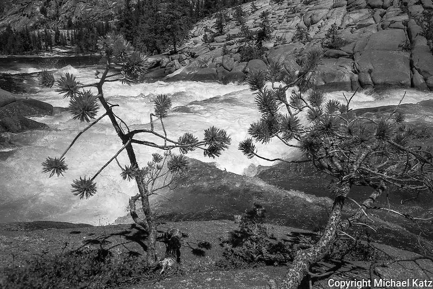 Cascades, Tuolumne River 1