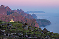 Midnight twilight of summer over wild camp on summit of Storskiva, Moskenesøy, Lofoten Islands, Norway