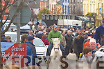 The large crowd at the Castleisland horse fair on Saturday   Copyright Kerry's Eye 2008